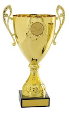 Pokal Europa