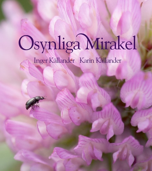 Osynliga Mirakel