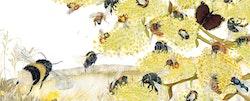 Pollenkyssen