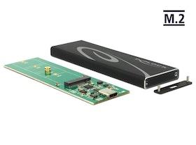 DeLOCK Ekstern Lagringspakning USB 3.1 (Gen 2) M.2 Card
