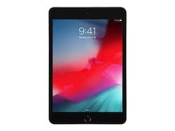 Apple iPad mini 5 Wi-Fi - Surfplatta - 256 GB - rymdgrå