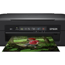 Epson Expression Home XP-255 - Multifunktionsskrivare