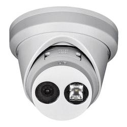 TRENDnet TV-IP323PI - Nätverksövervakningskamera - färg (dag och natt)