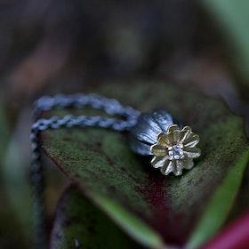 Poppy Seed Halsband, brons