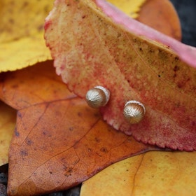 Golden acorns Earrings, silver