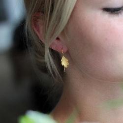 Tiny Leaf Örhängen - Gold