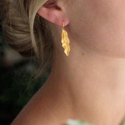 Thin Leaves Örhängen - Gold