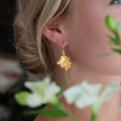 Precious Leaves Örhängen - Gold