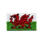 Flagga Wales