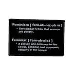 Feminism / Feminist