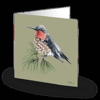Nordic Hummingbird