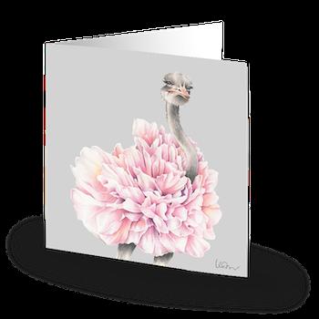 'Prima Ostrich'