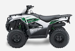 Kawasaki Brute Force Atv 300