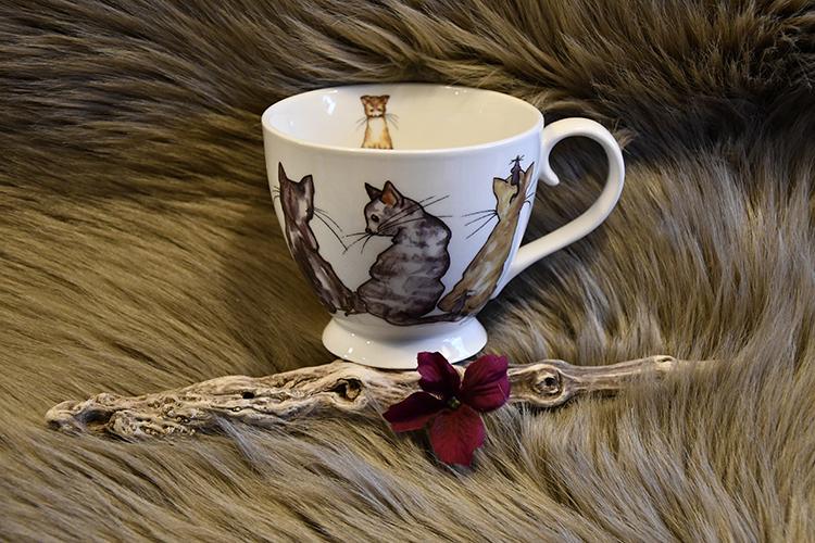 Tekopp Katt