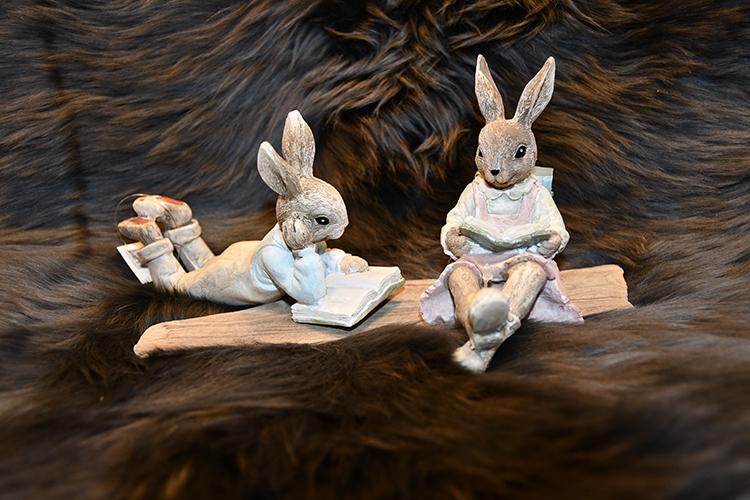 Kaniner som läser