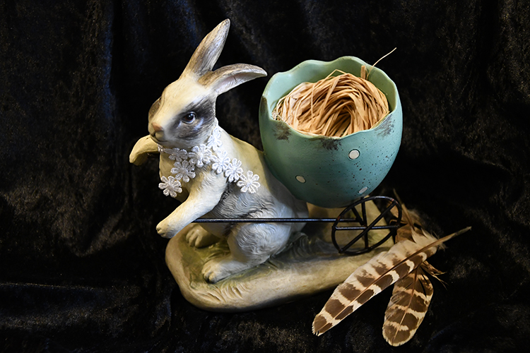 Kanin med Äggvagn