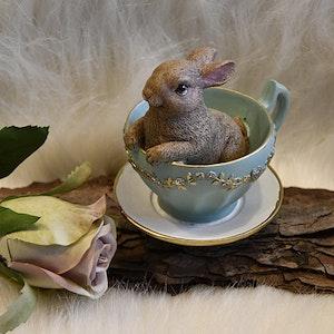 Liten Kanin i kopp