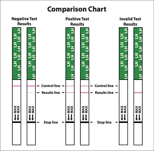 Ägglossningstest sticka One Step - 21 st (FRI FRAKT)