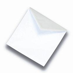Kuvert till disktrasor