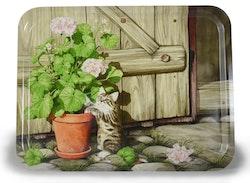 """Bricka i trä 43×33 cm med """"Pelargoniakatt""""/ finns till salu på Tradera"""