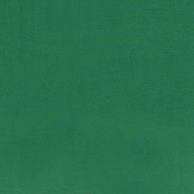 Grön jersey