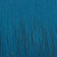 Pälskrage blå