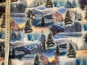 Vinterlandskap jersey