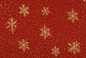 Julstjärnor röd jersey