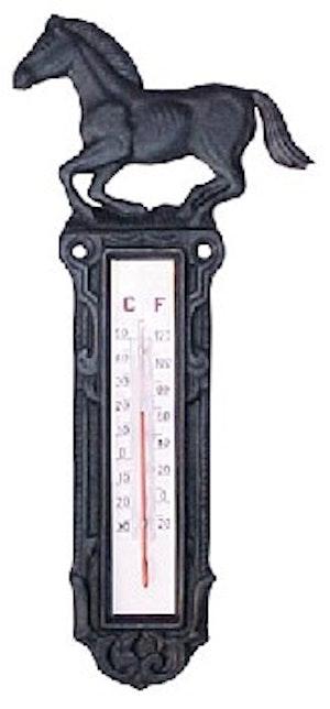 Termometer i gjutjärn
