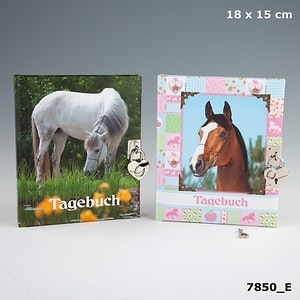 Horses Dreams Dagbok
