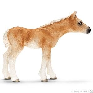 Haflinger föl - Schleich