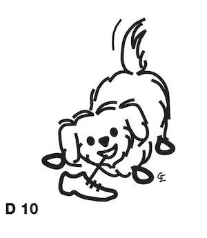 Mindre långhårig hund