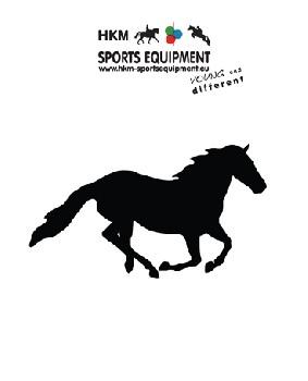 Bildekal Horse in gallop