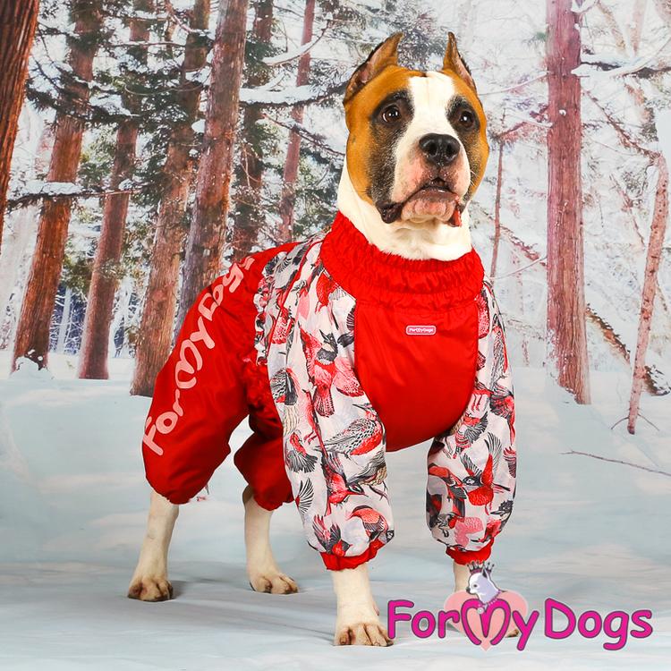 "Varm Vinteroverall ""Röd fågel overall"" Tik "" For My Dogs"""