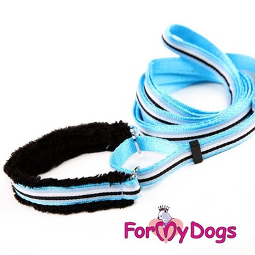 "Collar & Leash, Halsband & Koppel i ett ""Blå Randig"" Unisex ""For My Dogs"""