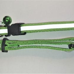 Halsband Valp - Liten ras - Reflex - Ljusgrön