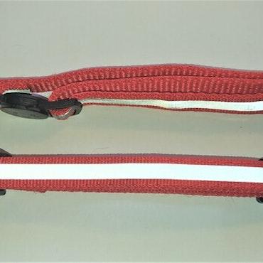 Halsband Valp - Liten ras - Reflex - Röd