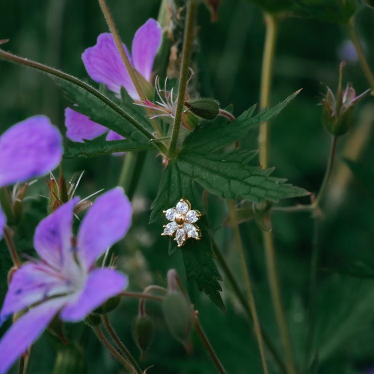 Blomstra örhängen