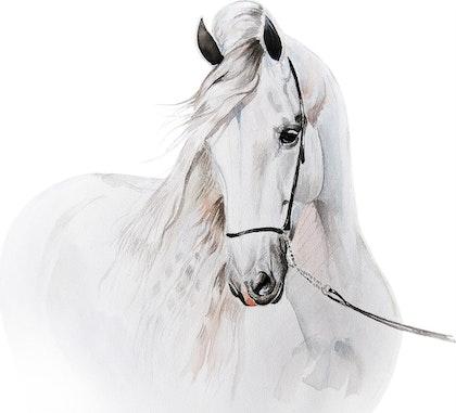 Babylove väggklistermärke, stor häst