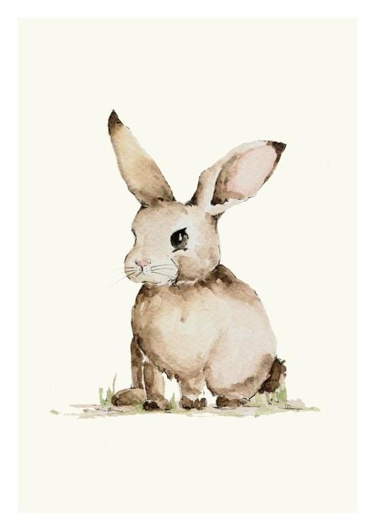 Poster liten kanin , poster till barnrummet