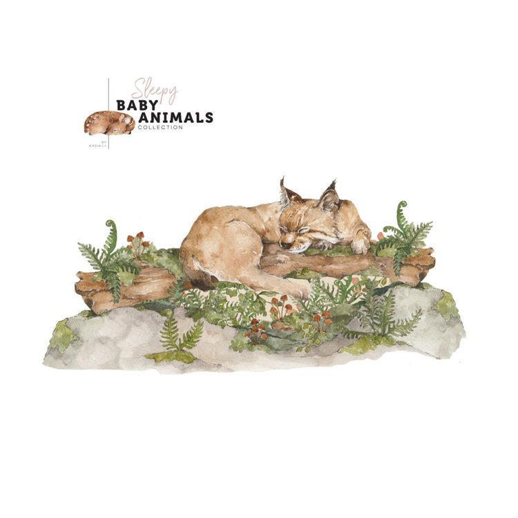 Väggdekor, väggklistermärken wild cat