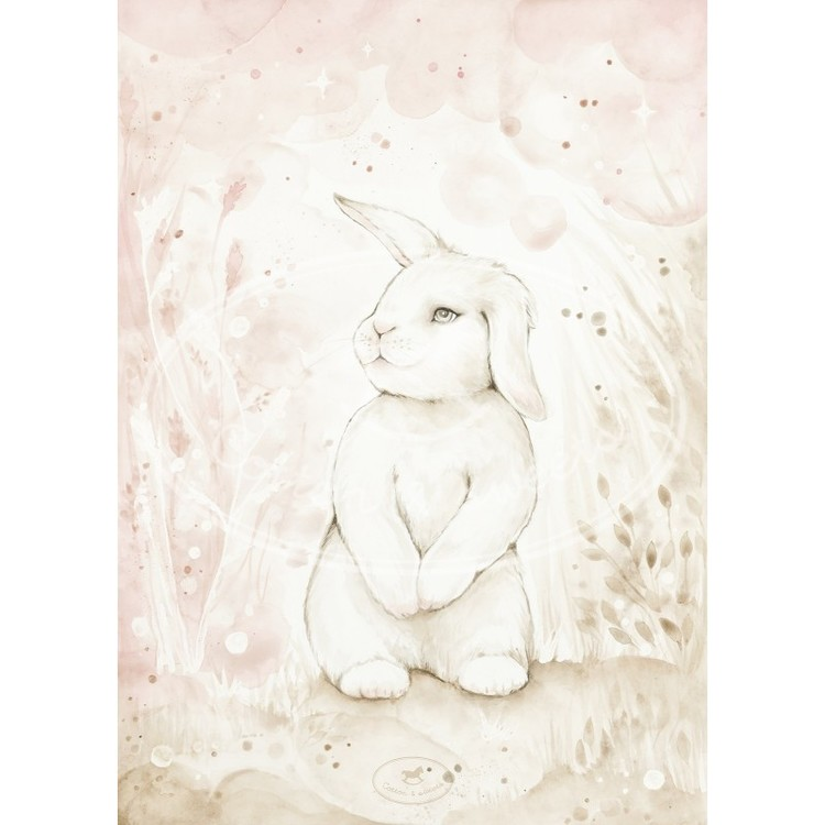 Cotton & Sweets, poster lovely rabbit
