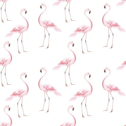 Tapet Flamingos
