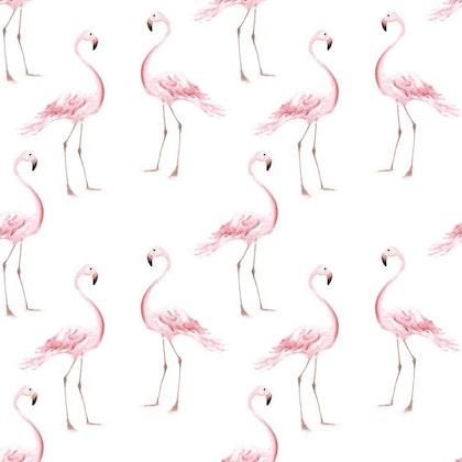 Tapet Flamingos