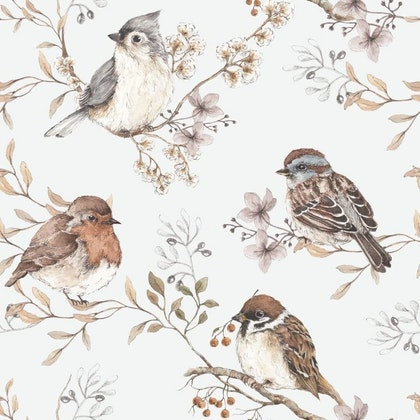 Tapet Birds White-Grey
