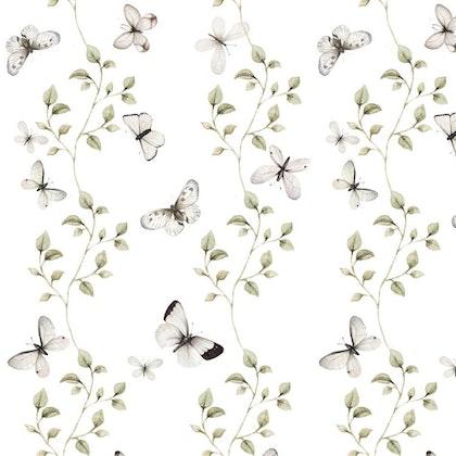 Tapet fjärilar,  butterflies having fun