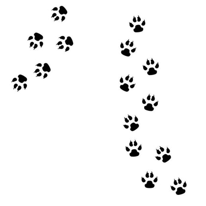 Väggklistermärken paw djurspår , 15 st.