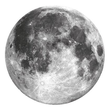 Grå måne klistermärke till barnrum