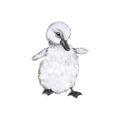 That`s mine , ankunge, The Beautiful Duckling väggklistermärke