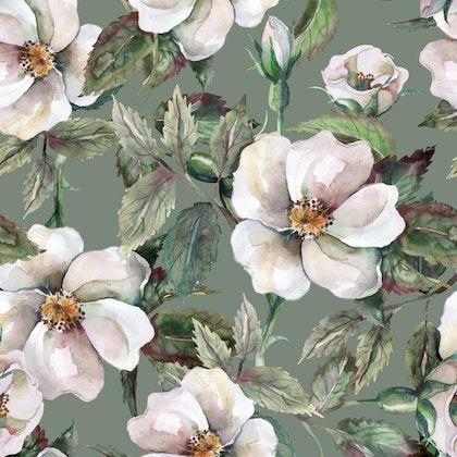 Dekorillo, tapet White roses